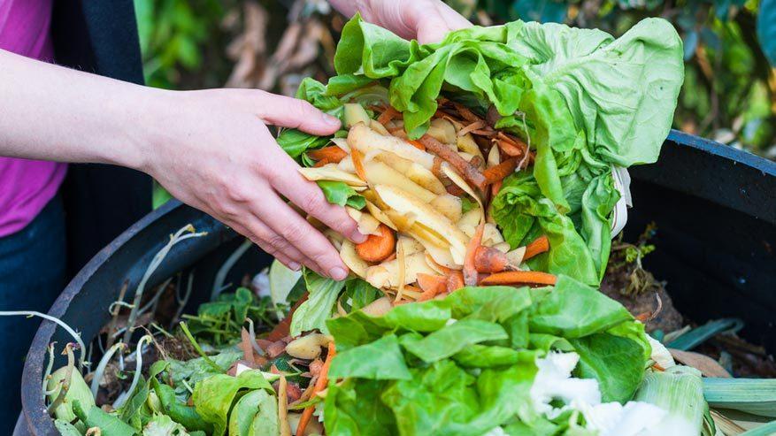 5 febbraio: Giornata nazionale dello spreco alimentare - Riciblog