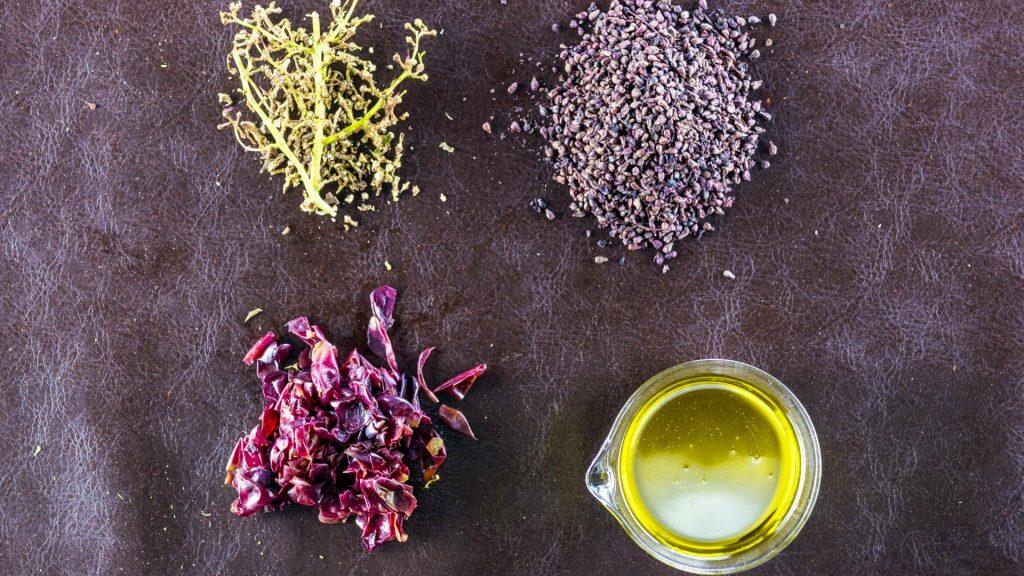 Buccia dell'acino d'uva, semi e raspi: ingredienti del bio tessuto Vegea - Riciblog