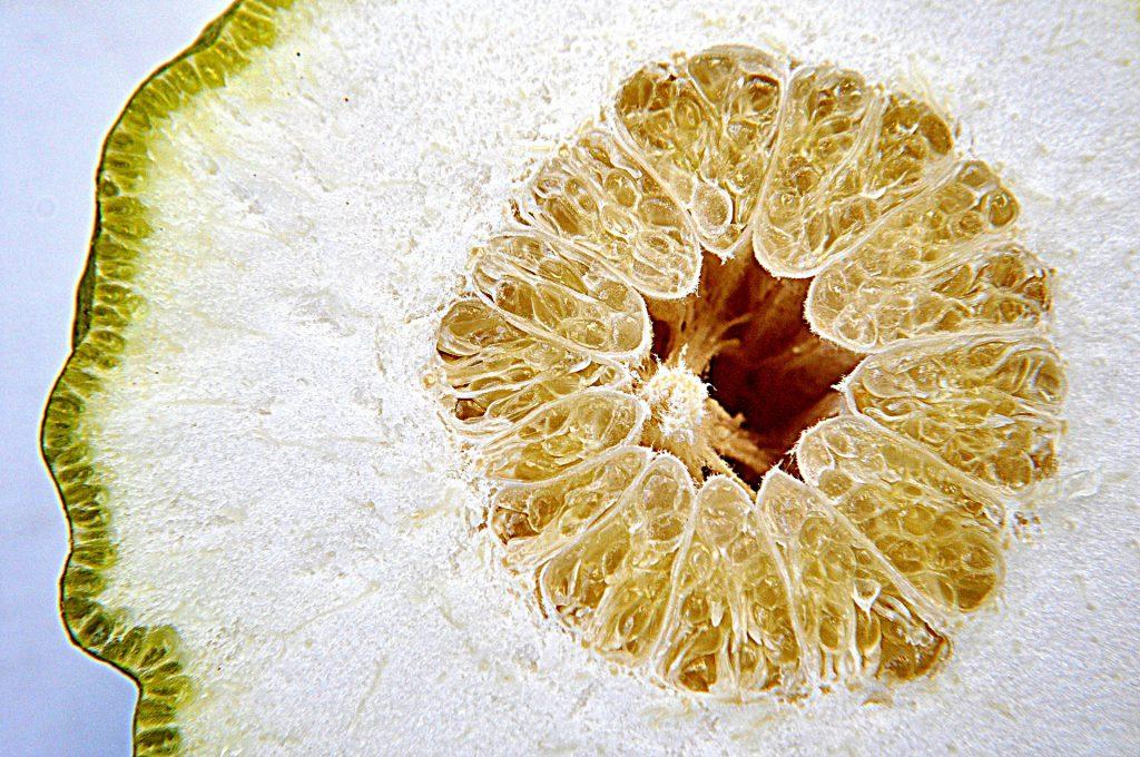 come utilizzare le scorze di limone nelle tue ricette