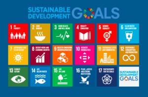 gli obiettivi dell agenda 2030