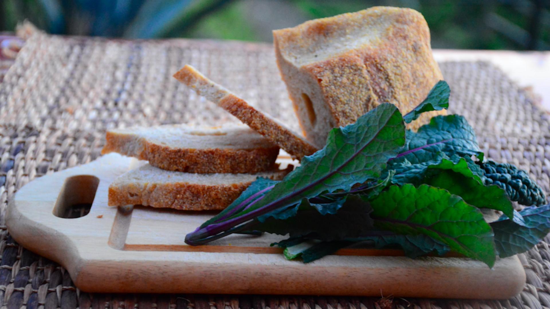 Ricette con cavolo e pane raffermo