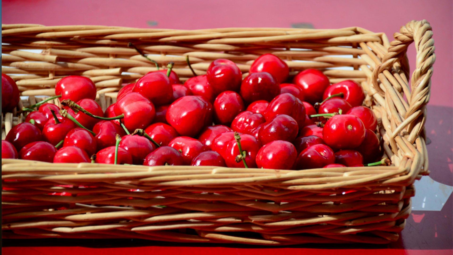 Come usare i noccioli e i piccioli di ciliegia per tisane