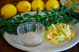 Ingredienti per bevanda fresca alle bucce di melone